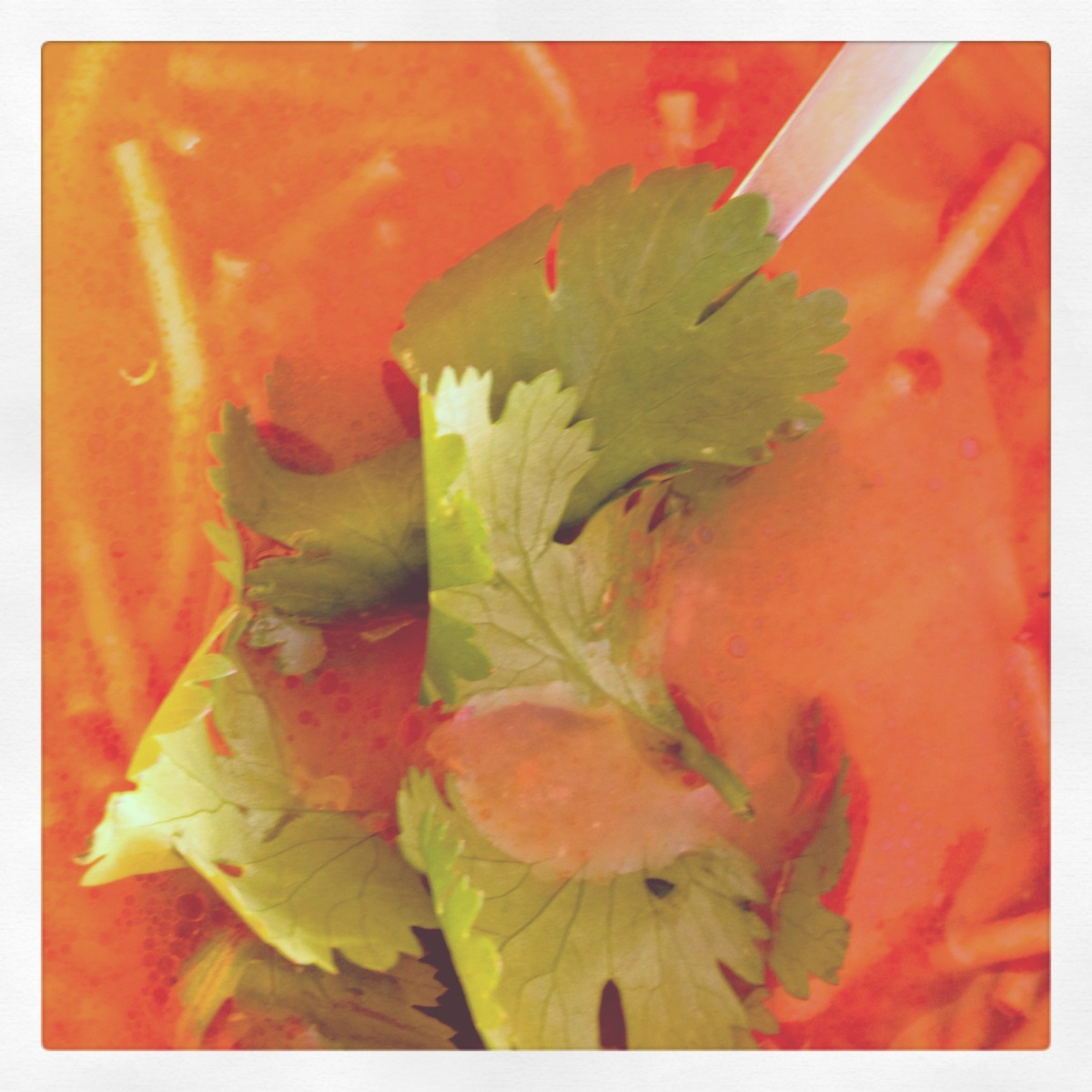 {Sopa de Fideo} - Authentic Mexican Noodle Soup